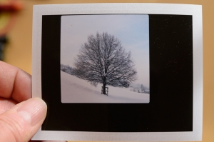 2013-01-20_13-03-30