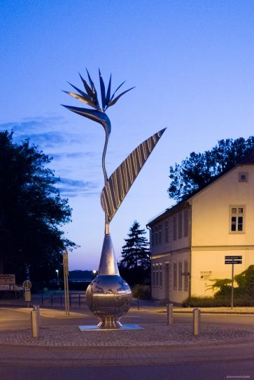 Die Strelitzie von Neustrelitz