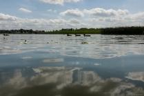 Ruhiges Wasser am Woblitzsee